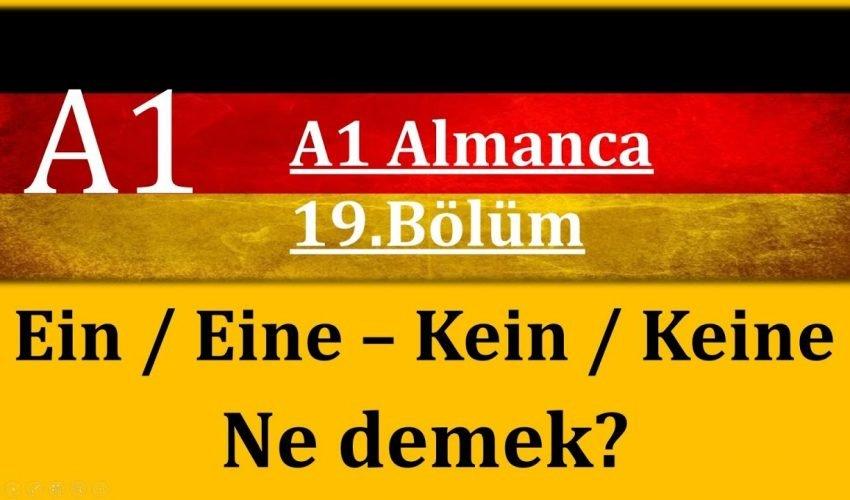 A1 Almanca | 19.Bölüm | Ein-Eine / Kein-Keine Ne demek?